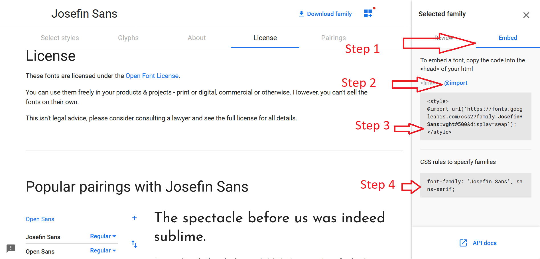 Google Font import to css