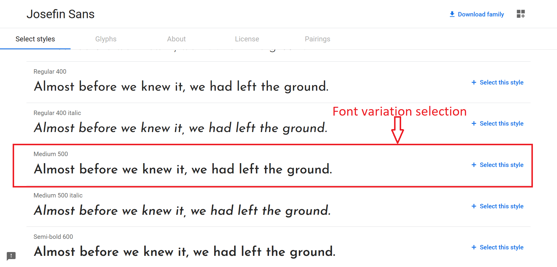 Google Font variation selection